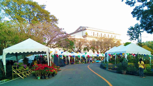 Negros Organic Farmers Festival - Bacolod City Guide