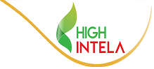 High Intela Quận 8