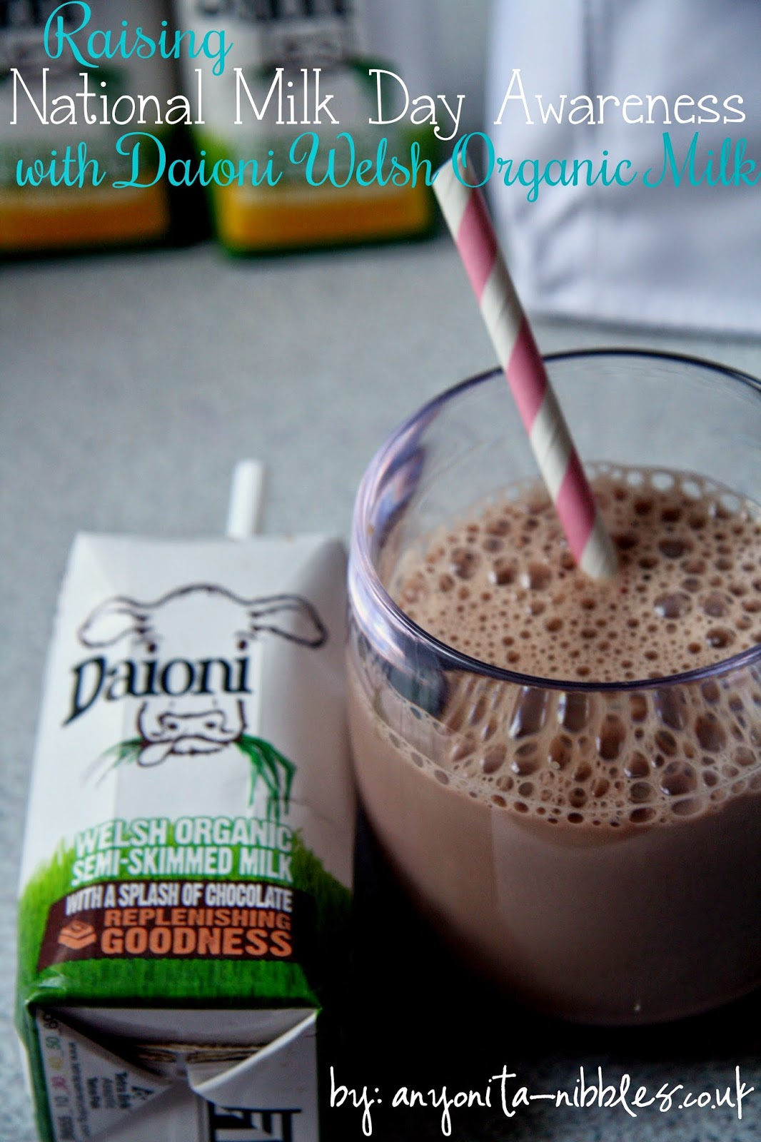 Daioni Welsh Organic Chocolate Milk from Anyonita-nibbles.co.uk