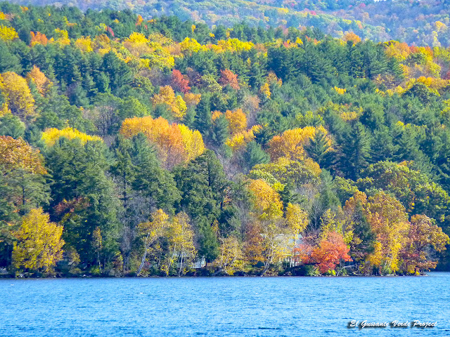 Árboles de Colores de Otoño en Vermont - Estados Unidos por El Guisante Verde Project