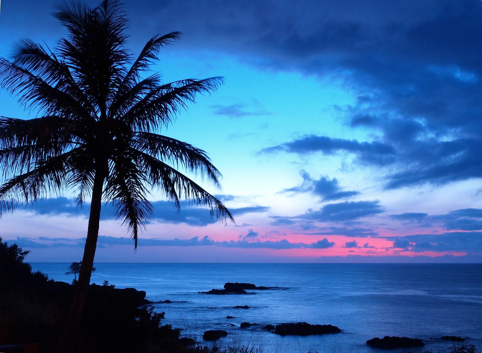 Live Like a Local on Oahu