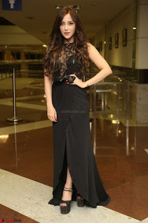 Angela Krislinzki in Transparent Black Gown at Rogue Movie Teaser Launch 1st March 2017 043.JPG