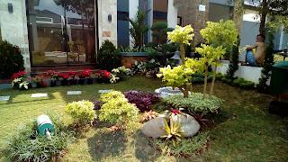 Tukang Taman,Jasa Tukang Taman,Jasa Renovasi Taman,Jasa Pembuatan Taman