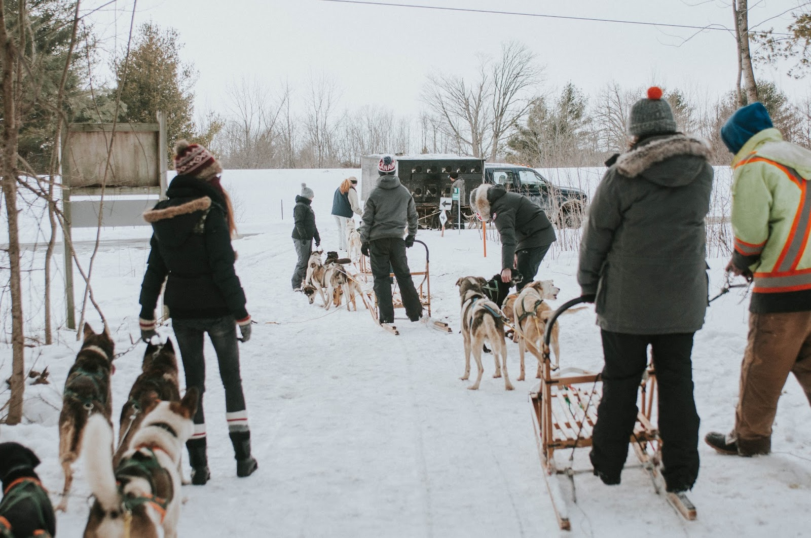 Sandra Brzezinski Dogsledding At Windrift Adventures