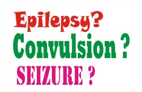 facts about epilepsy convulsion and seizure
