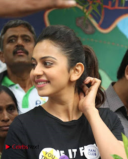 Actress Rakul Preet Singh Pictures At Haritha Haram Event  0007