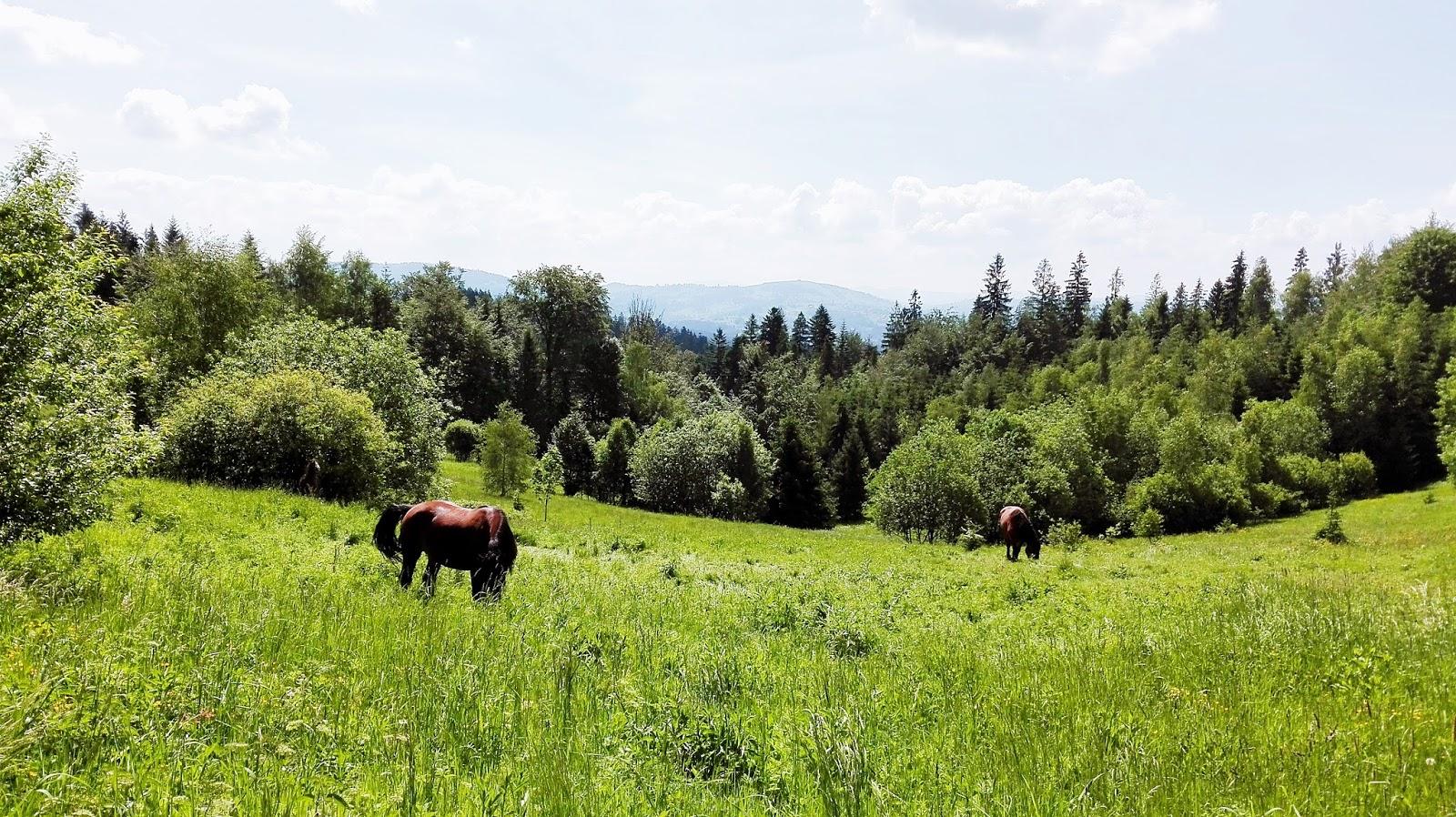 w górach jest wszystko co kocham, Beskidy, Jurek Kukuczka