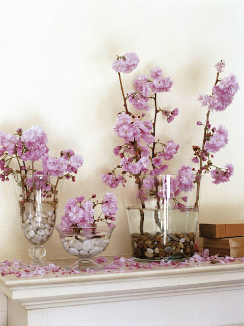 Vases of Glass With Stones 4