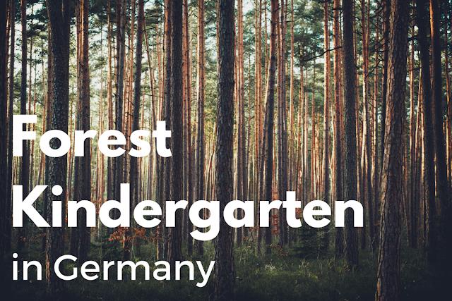 Forest Kindergarten in Germany - Waldkindergarten
