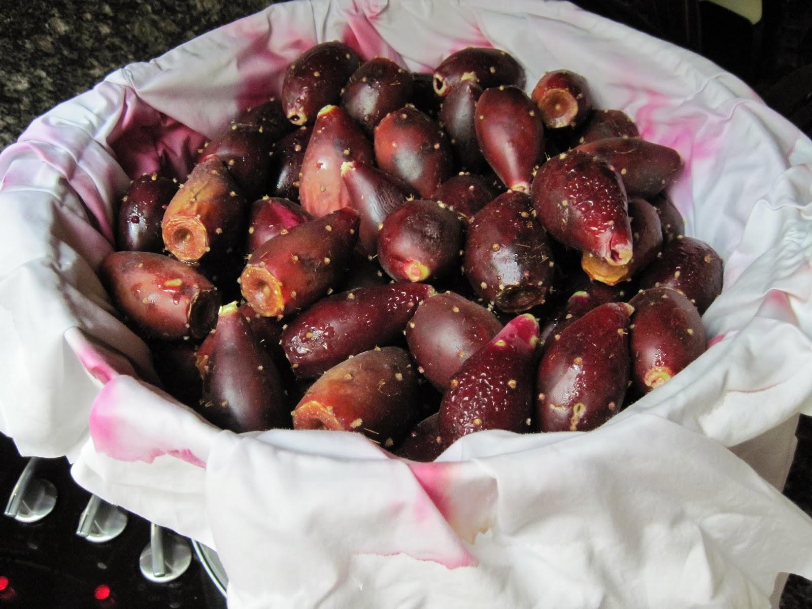 Prickly Pear Jelly (Heritage Recipe)