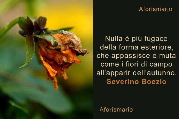 """aforismario®: fiori - 150 frasi profumate e """"petalose"""""""