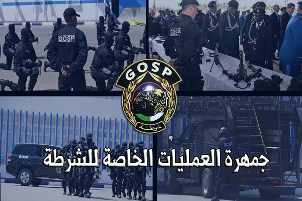 بالفيديو : القوة الضاربة للشرطة الجزائرية فرقة GOSP
