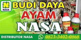 AGEN NASA DI Amen Lebong - TELF 082334020868