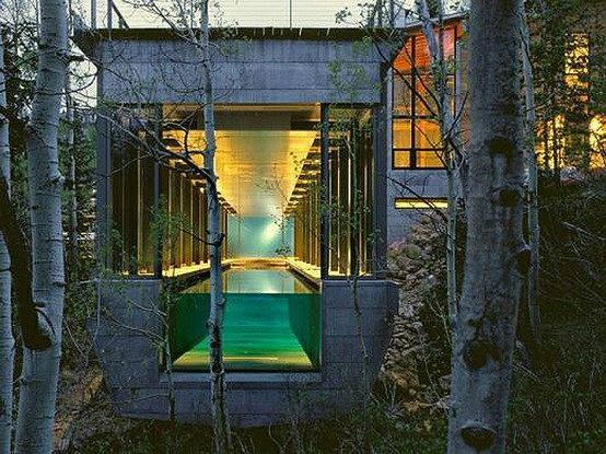 Maison dans forêt