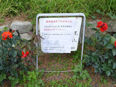 花博記念公園鶴見緑地のバラ園 薬剤散布完了