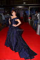 Payal Ghosh aka Harika in Dark Blue Deep Neck Sleeveless Gown at 64th Jio Filmfare Awards South 2017 ~  Exclusive 031.JPG