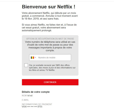 Bins For Netflix