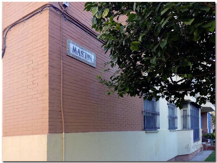 Calle Mastín