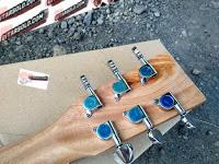 Gitar Martin  DX1AE Custom