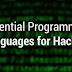 Bahasa Pemrograman Yang Penting untuk Hacker