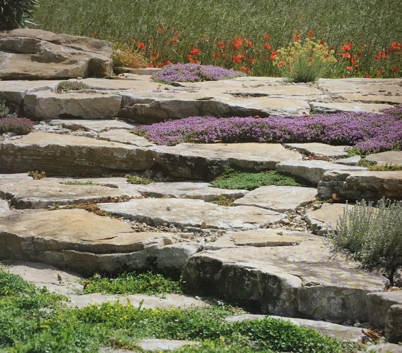 rocalla en jardín de secano