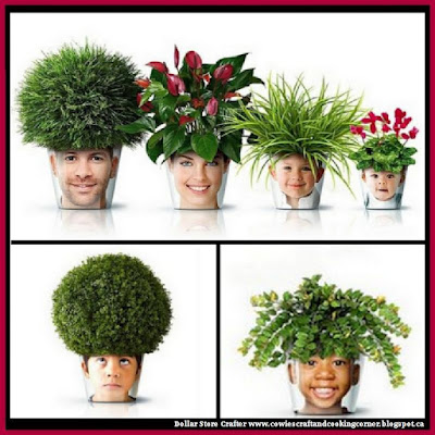 homemade chia pet instructions