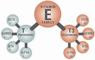 Dua-jenis-vitamin-e