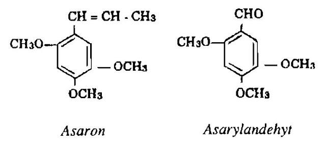 Thành phần hóa học Thủy xương bồ - Acoruscalamus - Nguyên liệu làm thuốc Chữa Bệnh Tiêu Hóa