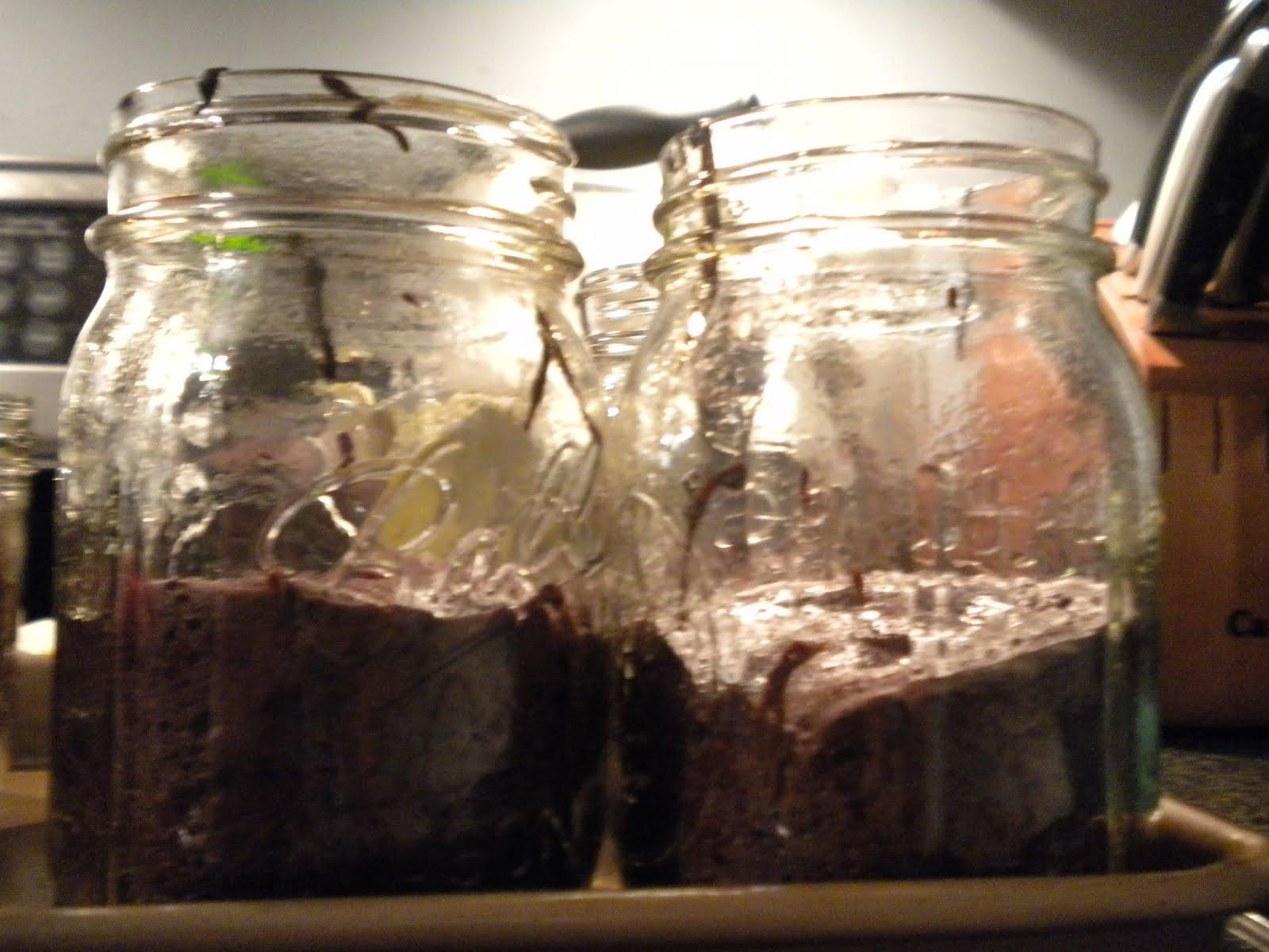 Cake In A Jar Recipe Microwave: Savory Flavors: Flourless Chocolate Cake In A Jar