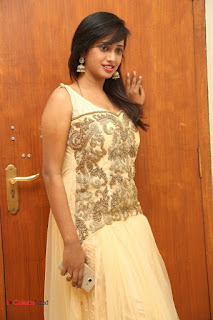 Actress Nakshatra Latest Picture Gallery in Long Dress  0025.JPG