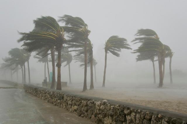 Dicas sobre furacões em Miami na Flórida