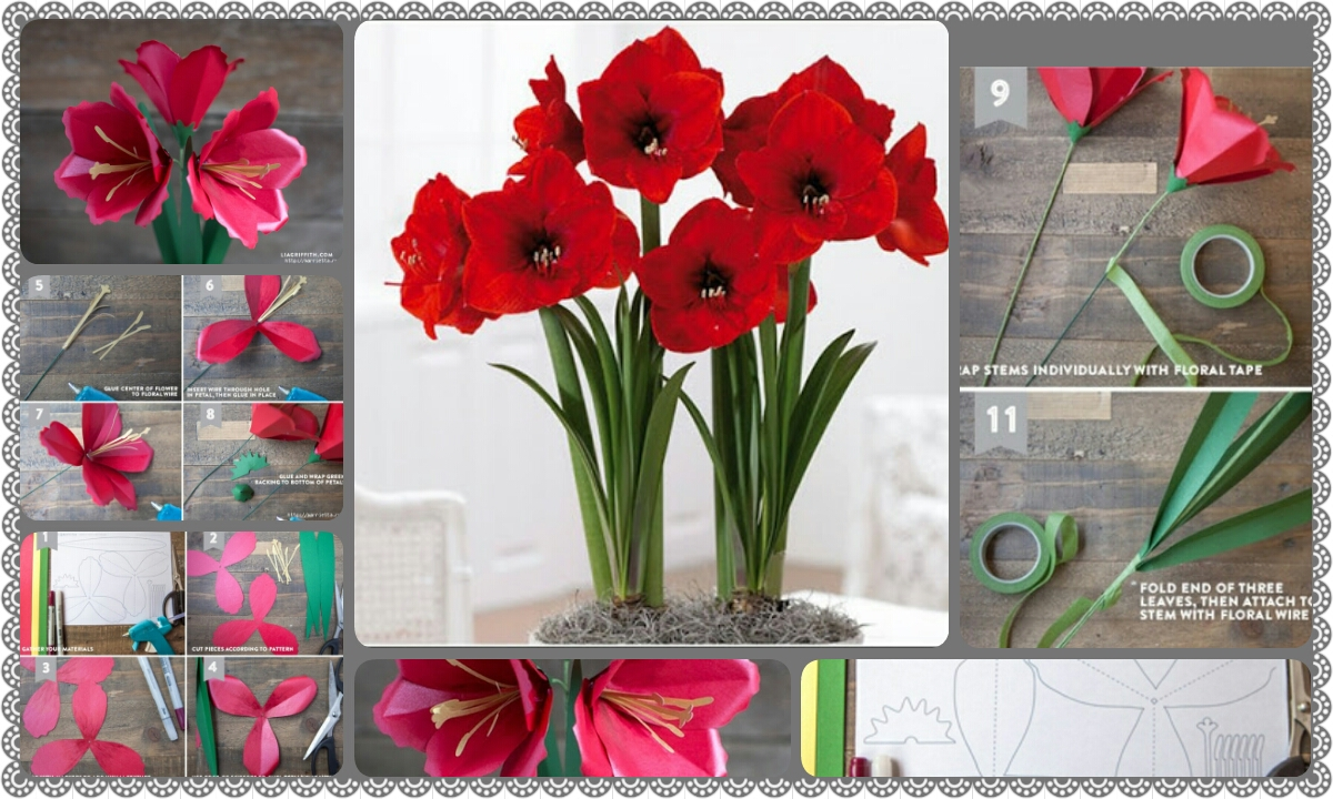 Flowers made by paper image collections flower decoration ideas amaryllis flowers made of paper with your own hands crazzy craft amaryllis flowers made of paper mightylinksfo