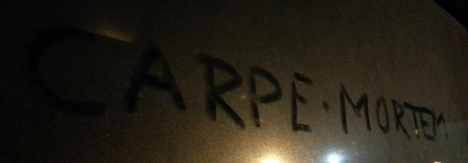 «Carpe·mortem», «Grip døden», tekst/foto: Tor-Ivar Krogsæter