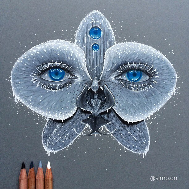 18-Snowy-Orchid-Simon-Balzat-Colored-Pencils-make-Beautiful-Drawings-www-designstack-co