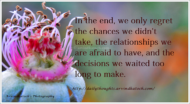 Regret, chance, Relationship, afraid, decision, Daily Thought, Daily Quote