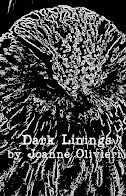 Dark Linings by Joanne Olivieri