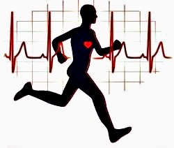 Importancia de monitorear el ritmo card aco fcm x for Que significa gym