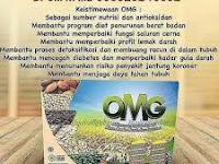 OMG a.k.a Organic Multi Grain
