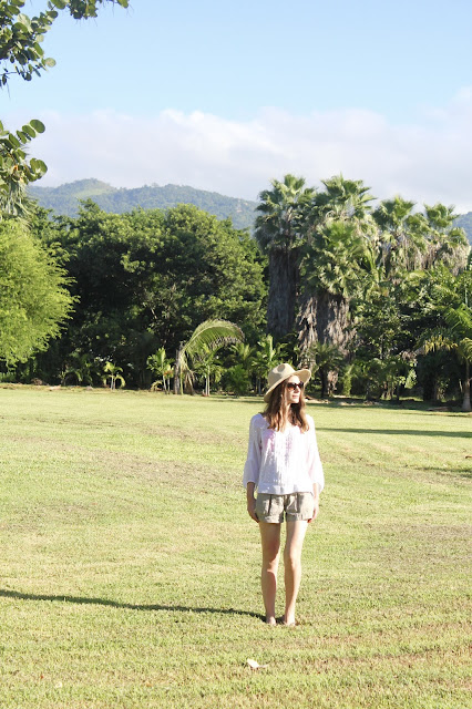 Jamaican Jungle