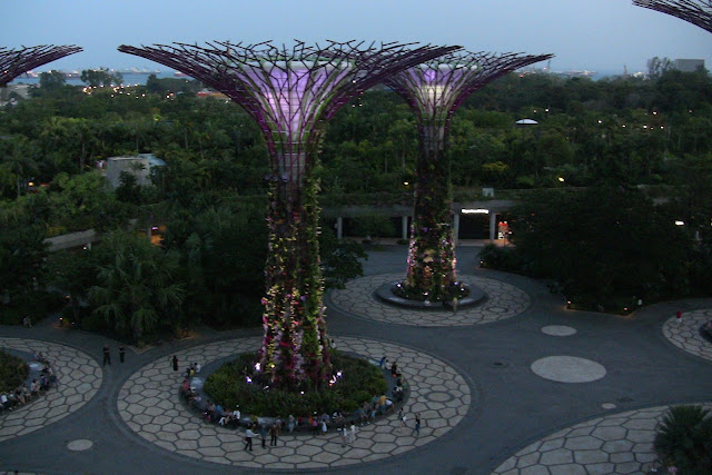 Gardens By The Bay nocą