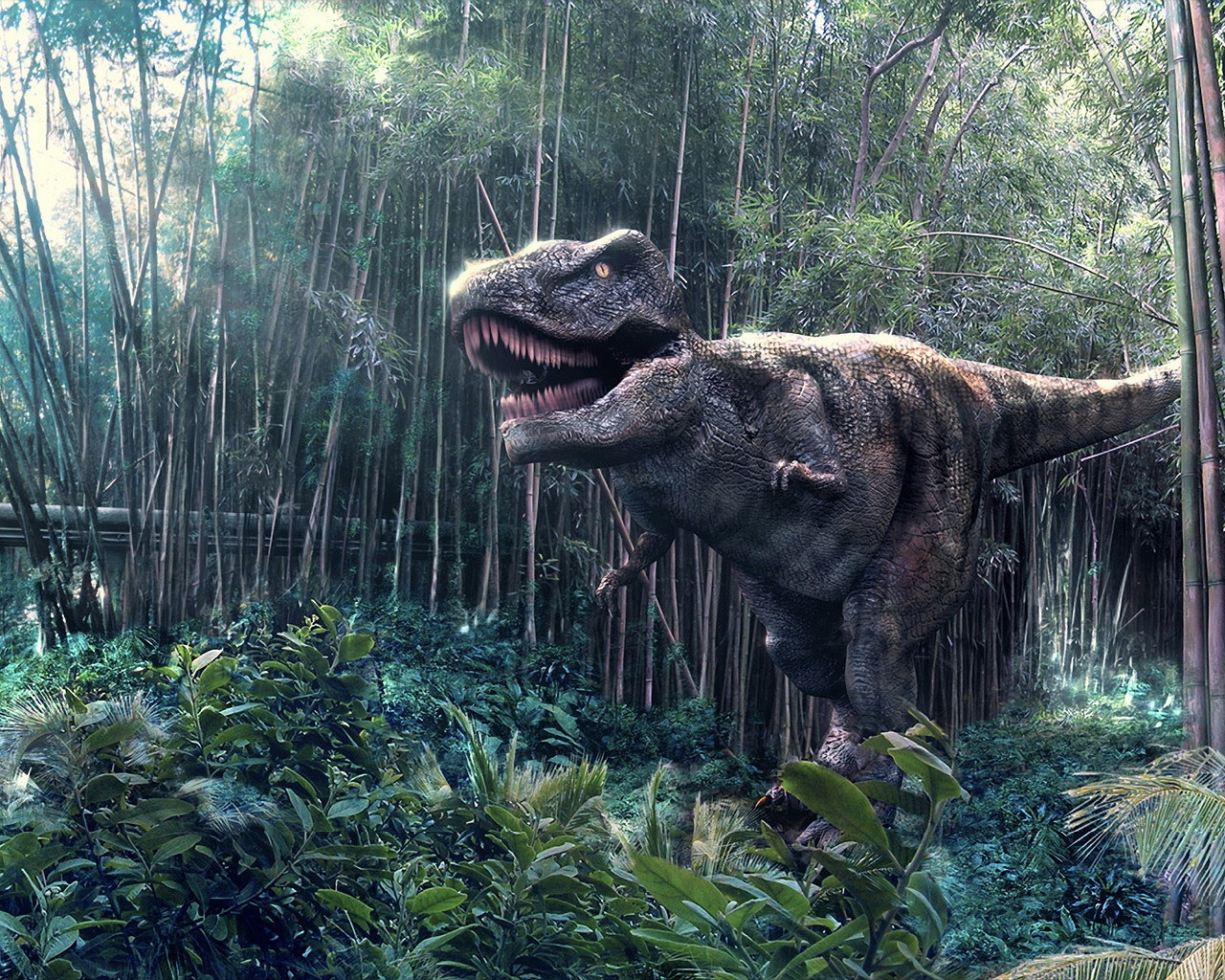 T-Rex Wallpapers | Fun Animals Wiki, Videos, Pictures, Stories