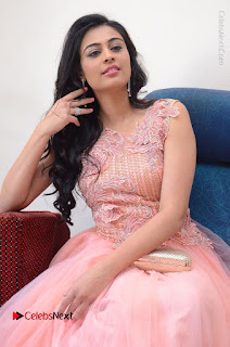 Actress Neha Hinge Stills in Pink Long Dress at Srivalli Teaser Launch  0063.JPG