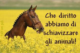 Cavallo mangia in un campo di fiori gialli