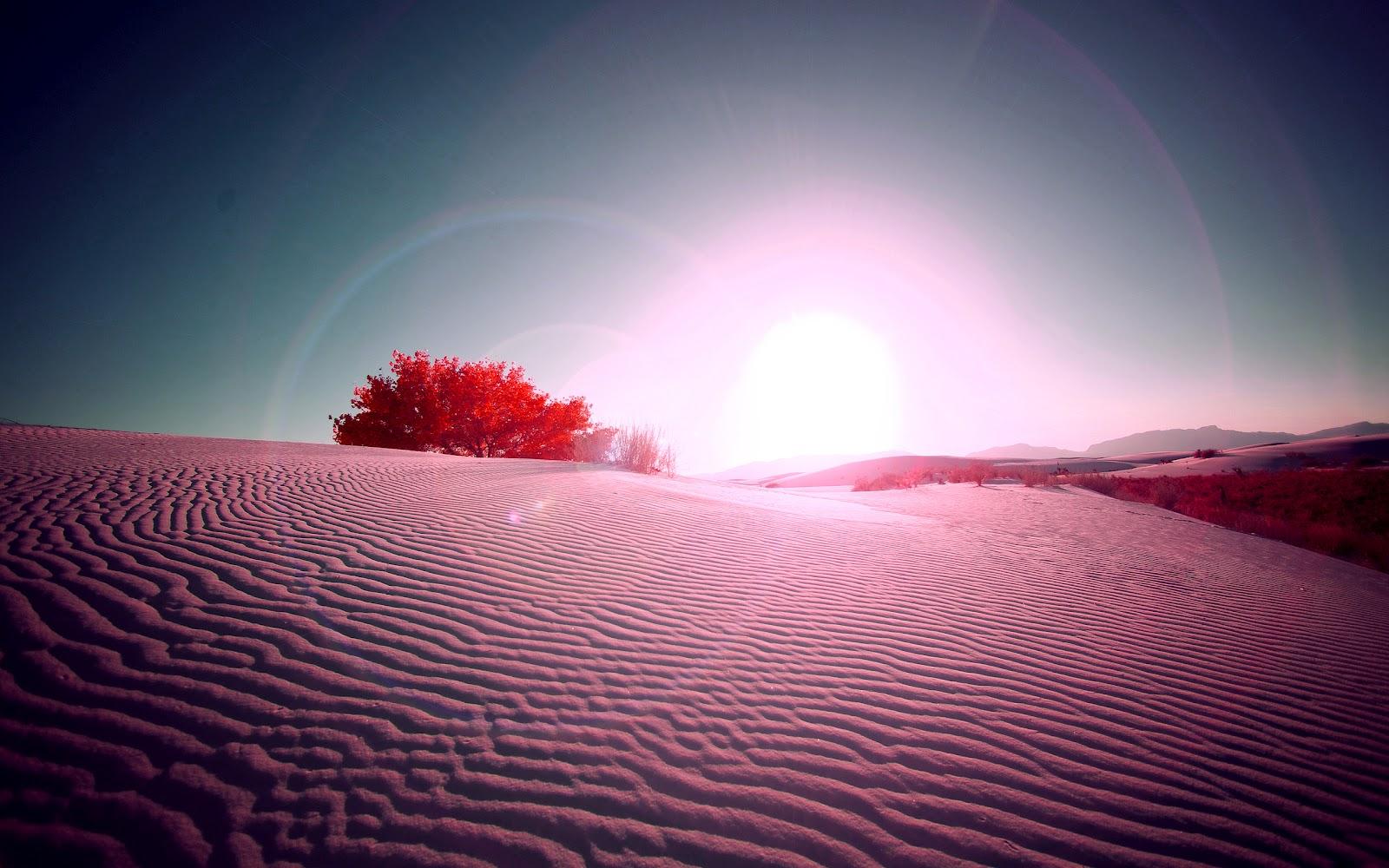 Hd Woestijn Achtergronden En Foto S Achtergronden