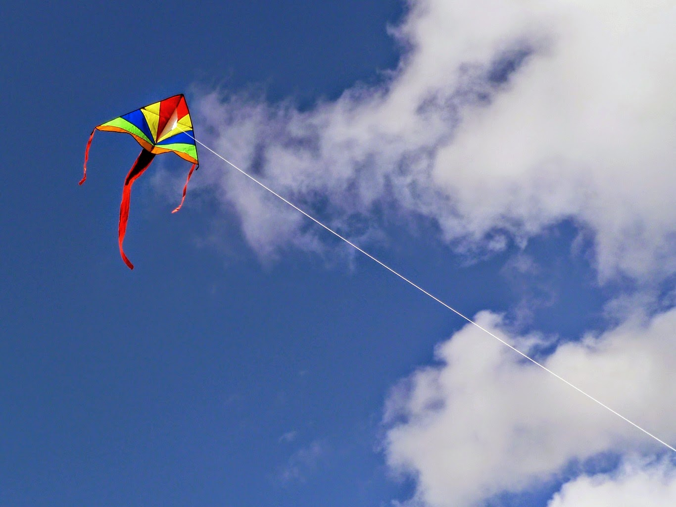 lets go fly a kite