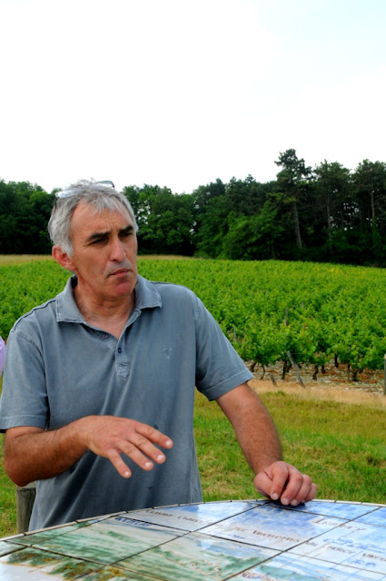 wijntourisme bourgondie, oenotoerisme bourgondie, aoc irancy,