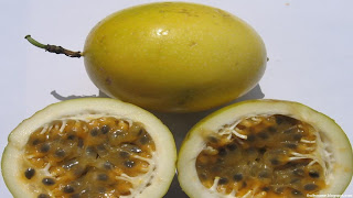 voavanga fruit images wallpaper