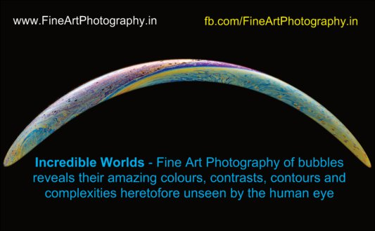 Exhibition Business Card with website and Facebook Links