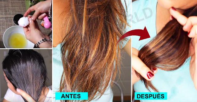 Are You Worried For Dry Hair, See This Remedy And Get Silky Hair