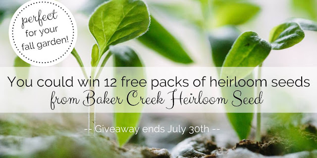 You could win a package of seeds for your fall garden from Baker Creek Heirloom Seeds.